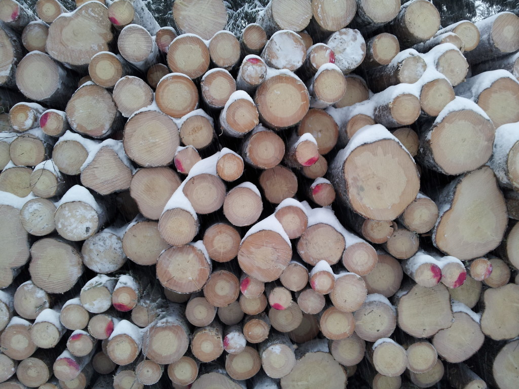 Mobilizing wood for bioenergy